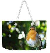 Quizzical Robin Weekender Tote Bag