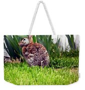 Rabbit As A Painting Weekender Tote Bag