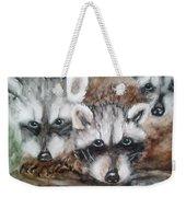 Raccoon Babies By Christine Lites Weekender Tote Bag by Allen Sheffield