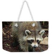 Raccoon Bandit Weekender Tote Bag