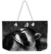 Raccoon Looking Weekender Tote Bag