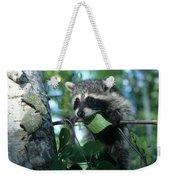Raccoon--up We Go Weekender Tote Bag
