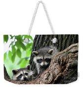 Racoons In Tree Weekender Tote Bag
