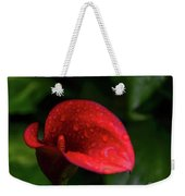 Rain Coated Red Anthurium Weekender Tote Bag
