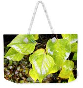 Rain On The Fall Lilac Weekender Tote Bag