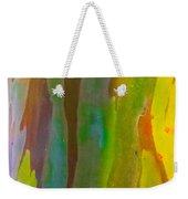 Rainbow Eucalyptus 8 Weekender Tote Bag