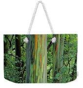Rainbow Eucalyptus Weekender Tote Bag