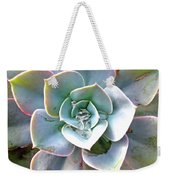 Rainbow Succulent - My Cup Runneth Over Weekender Tote Bag