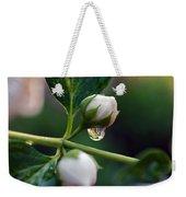 Raindrop Garden Weekender Tote Bag