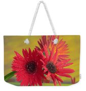 Raindrops On Gerbera Weekender Tote Bag