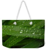 Raindrops On Green Leaves Weekender Tote Bag by Carol Groenen