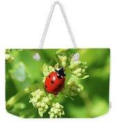 Raindrops On Ladybug Weekender Tote Bag