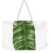 Rainforest Resort - Tropical Banana Leaf  Weekender Tote Bag