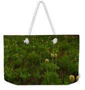 Rainier Wildflower Light Weekender Tote Bag