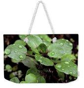 Rainy Day 11 Weekender Tote Bag