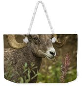 Ram Eating Fireweed Cropped Weekender Tote Bag