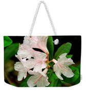 Rare Florida Beauty - Chapmans Rhododendron Weekender Tote Bag