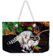 Rascally Raccoon Weekender Tote Bag by Will Borden