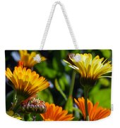 Reach For The Sun 1 Weekender Tote Bag