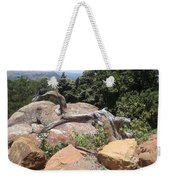 Reaching For Summits Weekender Tote Bag