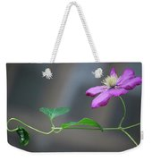 Reaching For The Fence Weekender Tote Bag