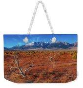 Read Fields Eastern Sierra Weekender Tote Bag