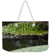 Ready To Spread Weekender Tote Bag