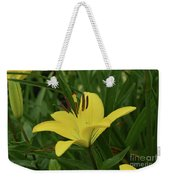Really Beautiful Yellow Lily Growing In Nature Weekender Tote Bag