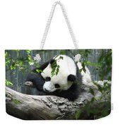 Really Cute Panda Bear Sleeping On A Log Weekender Tote Bag
