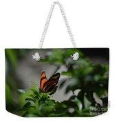 Really Elegant Oak Tiger Butterfly In Nature Weekender Tote Bag