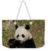 Really Great Panda Bear Chomping On A Fistful Of Bamboo Weekender Tote Bag