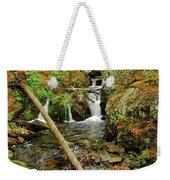 Reany Falls 2 Weekender Tote Bag