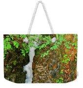 Reany Falls 4548 Weekender Tote Bag