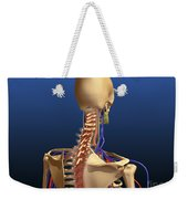Rear View Of Human Spine And Scapula Weekender Tote Bag
