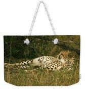 Reclining Cheetah Profile Weekender Tote Bag