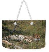 Reclining Cheetah Watching Weekender Tote Bag