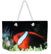Red And Black Anemonefish, Great Barrier Reef Weekender Tote Bag