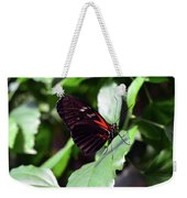 Red And Black Butterfly In The Garden Weekender Tote Bag