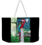 Red  And  Green Macaw         Zoo      Indiana Weekender Tote Bag