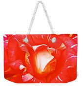 Red And White Rose In Puerto Varas-chile Weekender Tote Bag