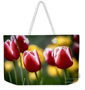 Red And White Tulips Large Canvas Art, Canvas Print, Large Art, Large Wall Decor, Home Decor Weekender Tote Bag