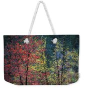 Red And Yellow Leaves Abstract Horizontal Number 1 Weekender Tote Bag