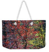 Red And Yellow Leaves Abstract Vertical Number 1 Weekender Tote Bag