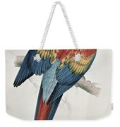 Red And Yellow Macaw  Weekender Tote Bag