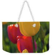 Red And Yellow Tulips Closeup Weekender Tote Bag
