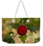 Red Apple Ready For Picking Weekender Tote Bag