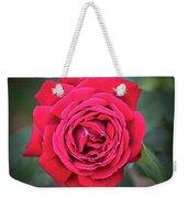 Red As A Rose  Weekender Tote Bag