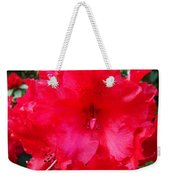 Red Azaleas Flowers 4 Red Azalea Garden Giclee Art Prints Baslee Troutman Weekender Tote Bag
