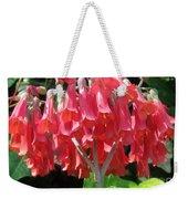 Red Bell Flowers. Sunny Spring Weekender Tote Bag