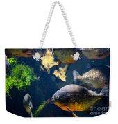 Red Bellied Piranha Fishes Weekender Tote Bag